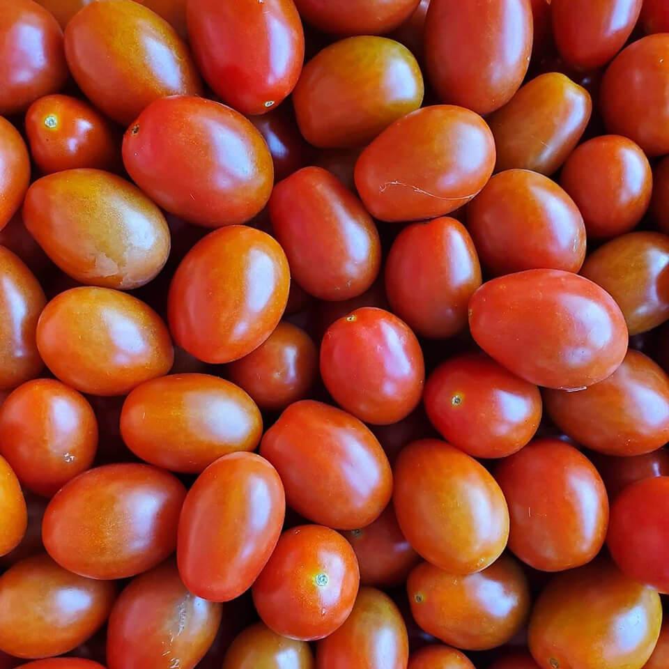 イタリアンミニトマト(ロッソナポリタン)